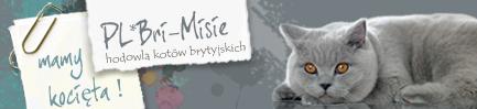 BRI-MISIE*PL